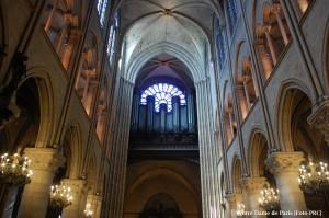 PRC_Notre Dame Interior 30