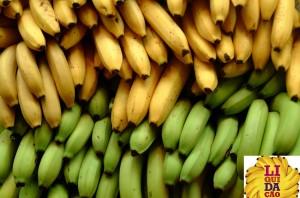 Não se importa de entregar a preço de banana patrimônio público para estatais comunistas