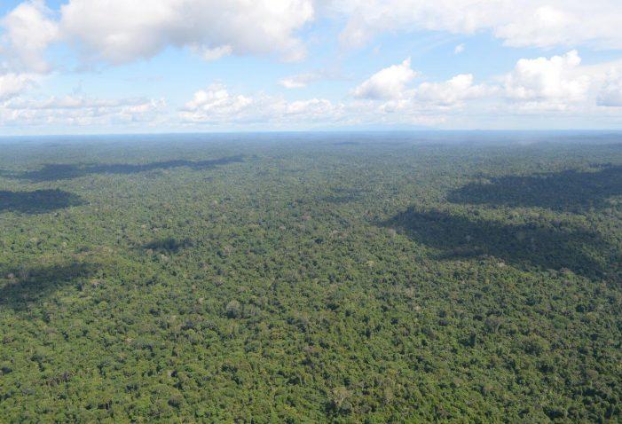 CPI investiga terra indígena em Roraima