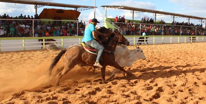 FIM DE UMA TRADIÇÃO? Vaqueiros protestam em Brasília