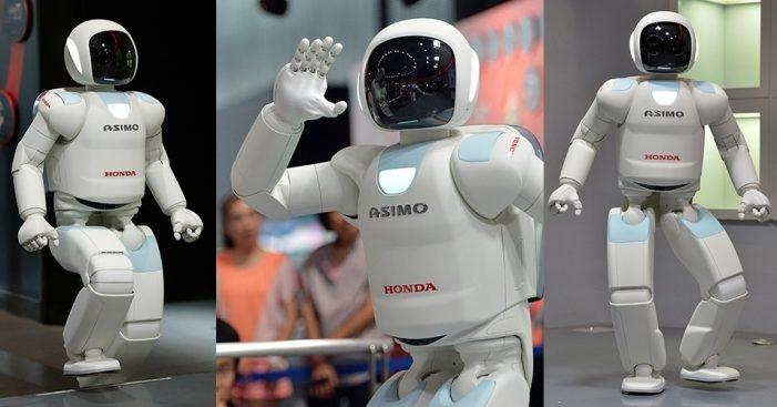 Robô mais avançado é menos autônomo que uma barata