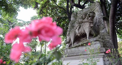 Cemitério para animais e humanos e ecologia