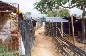 [foto: assentamento no recôncavo baiano].