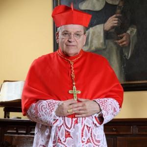 O patrono da Ordem de Malta, o Cardeal Raymond Leo Burke