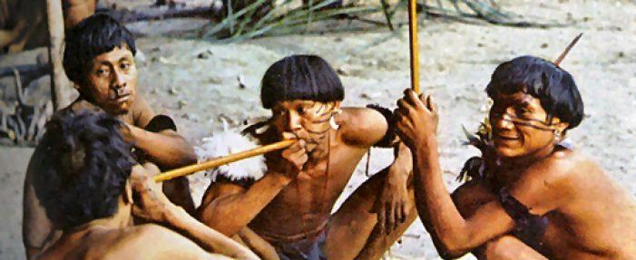 Tribalismo indígena, ideal da neomissiologia