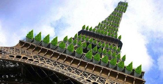 Eleições francesas: os verdes vão para o mato