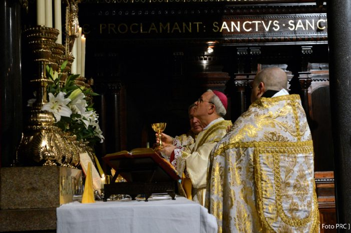 Santa Missa: um sacrifício sem mácula
