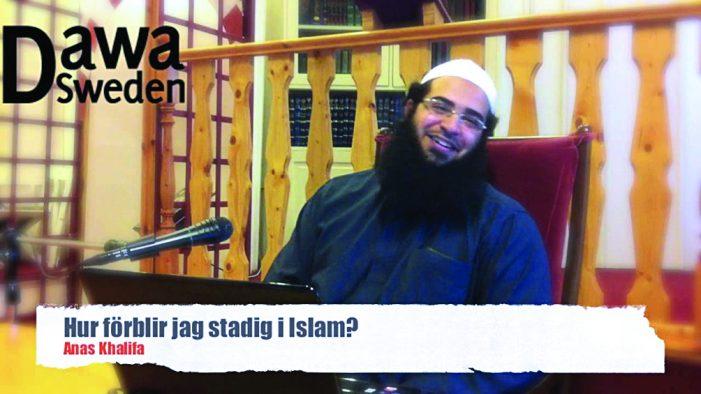 A triste sina da Suécia islamizada