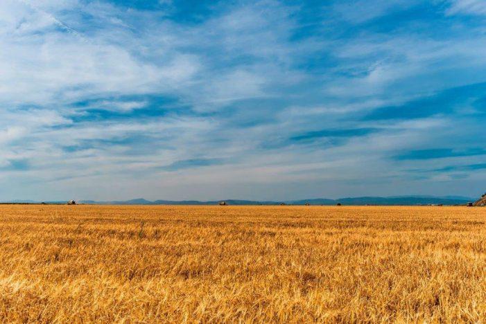 Cícero e as virtudes da agropecuária