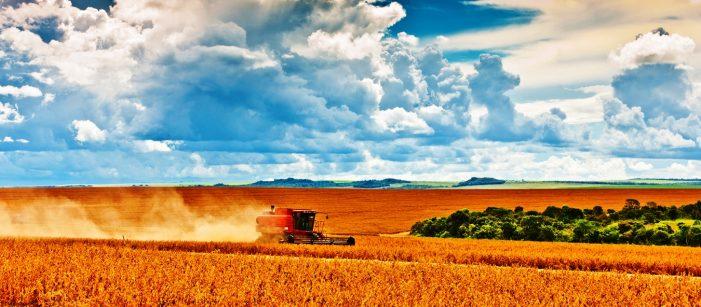 Agronegócio é a solução, apesar da má fé de alguns