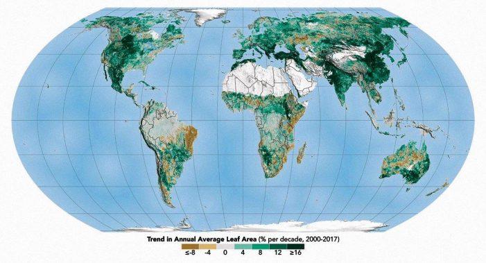 A Terra está cada vez mais verde