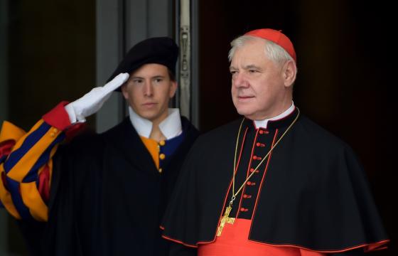 Outro cardeal alemão entra na liça
