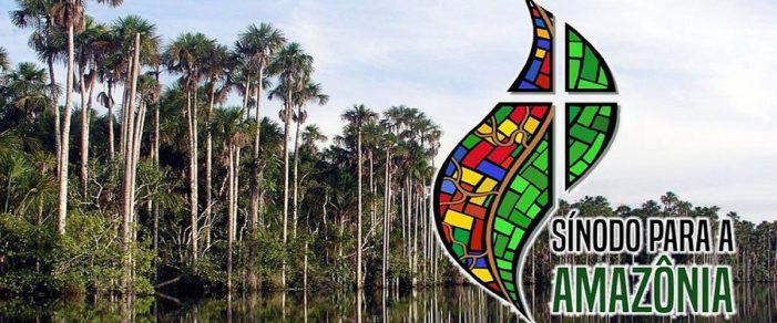 Sínodo da Amazônia ou Concílio Vaticano III?