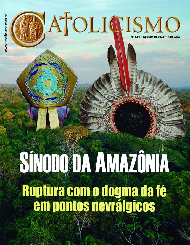 Sínodo da Amazônia afronta o magistério da Igreja em temas inegociáveis