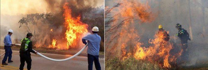 Mitos e mentiras de elites globais sobre os incêndios na Amazônia queimam intensamente