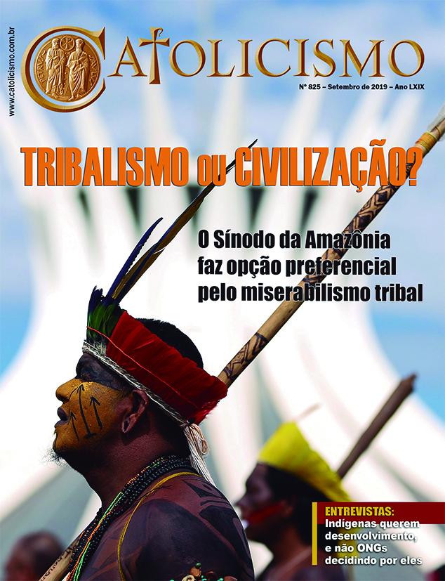 Alerta contra o Sínodo Pan-Amazônico