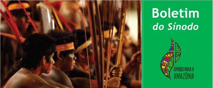 Empreendedorismo indígena no Brasil
