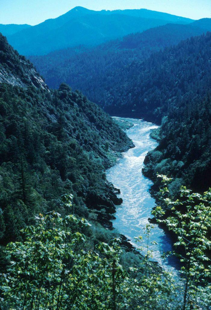 Contradições (aberrantes) de ecologistas radicais