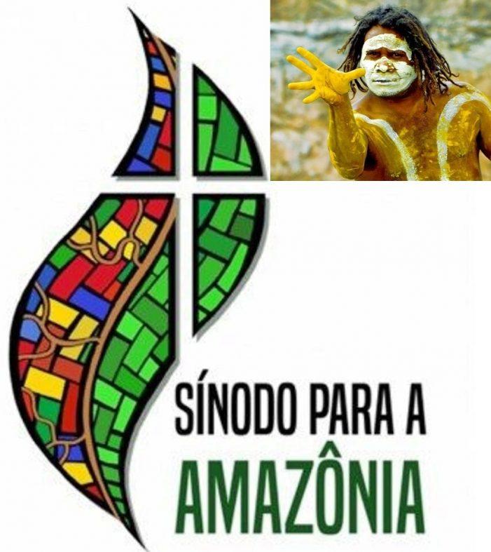 Sínodo da Amazônia: que os bispos falem de Cristo e não de  sincretismo