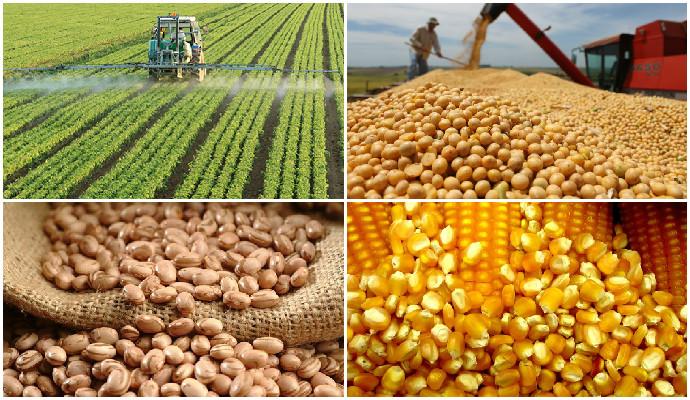Não estamos em 1823… — Balanço da Safra Agrícola