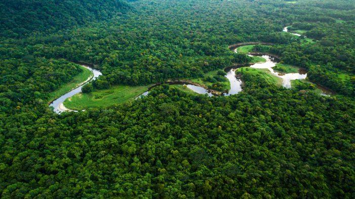 Amazônia – realidades e soluções