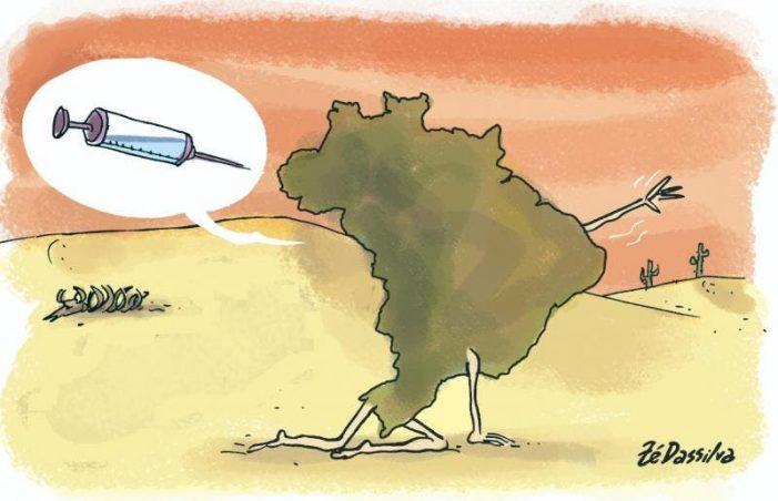Vacina contra maldição brasileira